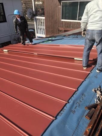 屋根材ガルバリウム鋼板を張る作業中