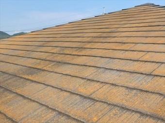 コケの繁殖したスレート屋根