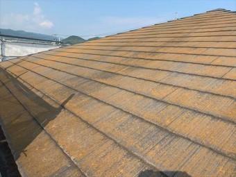コケの生えたスレート屋根