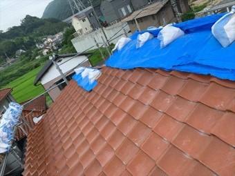 ブルーシートで雨養生をした瓦屋根
