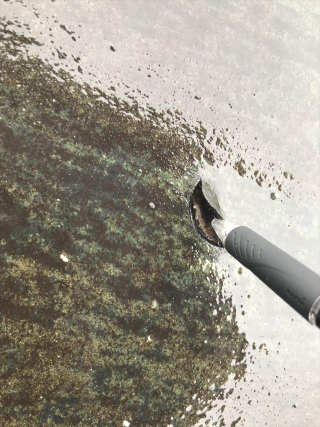 ビル防水層剥がれ