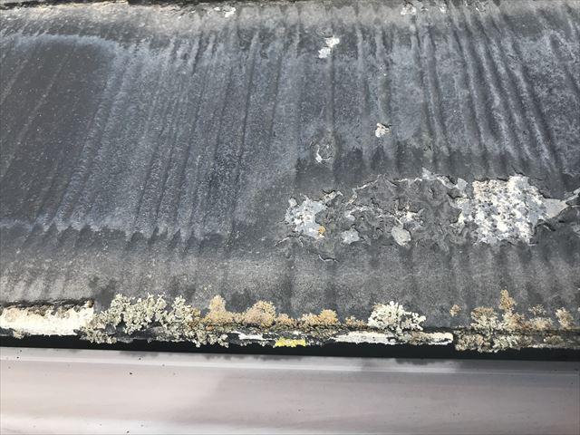 スレート屋根の苔・カビ