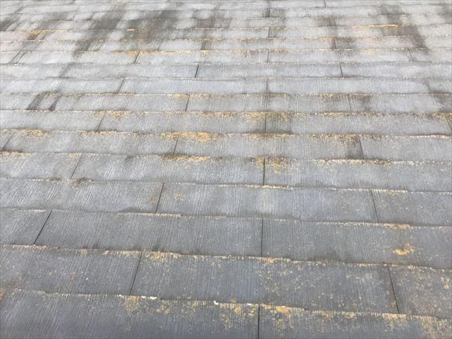 色あせやコケの発生したスレート屋根
