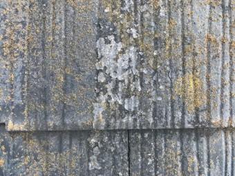 カラーベストの塗膜剥離