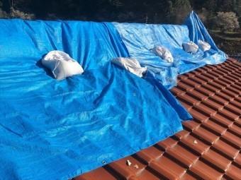 屋根にかけたブルーシート