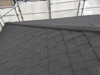 セネター屋根